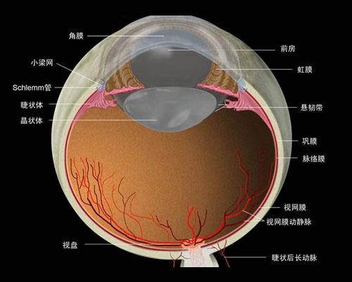 近视眼激光手术效果可以维持多久