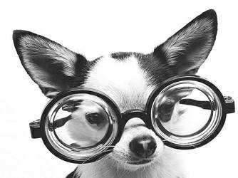 矫正近视的好方法有哪些?