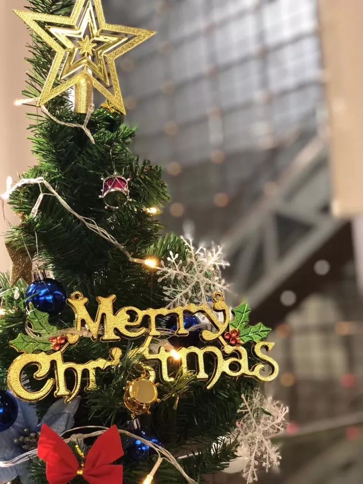 德视佳圣诞节活动